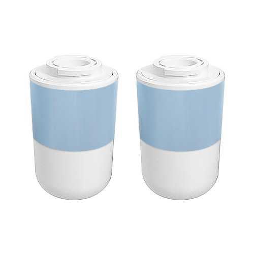 Replacement Refrigerator Water Filter For Kenmore 12527304 - 2 Pack